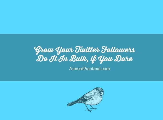 Grow Your Twitter Followers – Do It In Bulk If You Dare