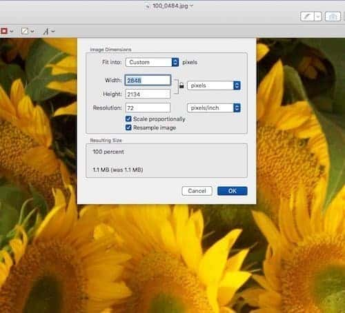 how to change image size on a Mac using Preview - set dimensions.