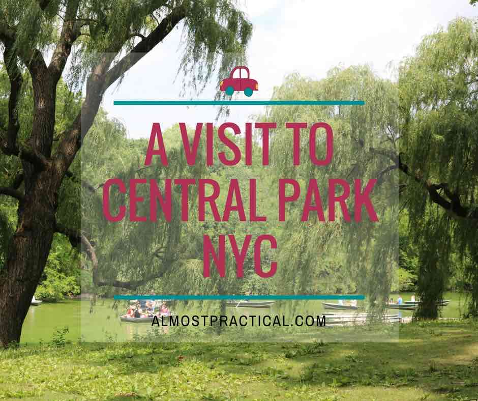 Yesterday I took a break to visit Central Park in NYC. It was a beautiful afternoon and I learned a few touristy tips to keep in mind for the next trip.