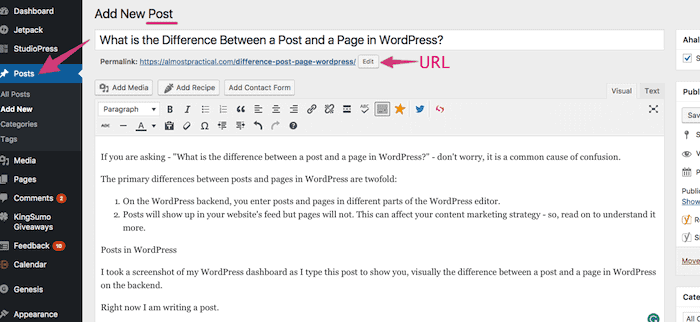 The blog post editor in WordPress