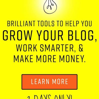 The Genius Bloggers Toolkit Flash Sale