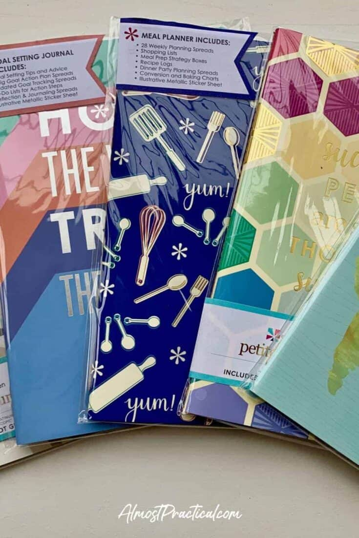 A close up of a selection of PetitePlanners for the Erin Condren On the Go Folio System.