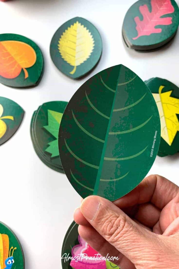 Close up of the dark green leaf side of the cards in the Stink Bug Card Game for children.