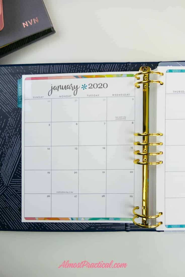 The tabbed monthly page for January in the Erin Condren LifePlanner Binder.