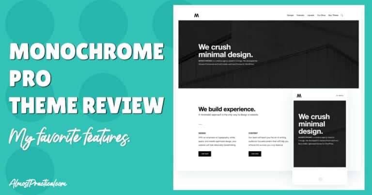 Monochrome Pro Theme for WordPress Review – My Favorite Features