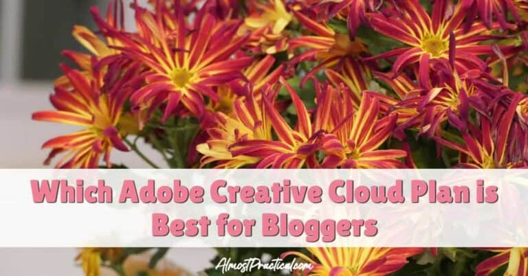 Which Adobe Creative Cloud Plan is Best for Bloggers?
