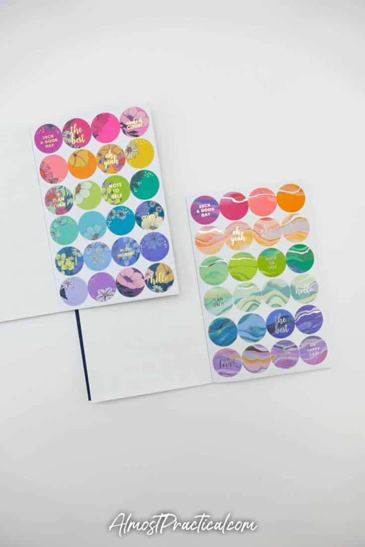 Erin Condren Flower Power Sticker Book and Layers Sticker book side by side - page 6