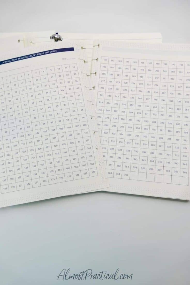 Goal tracking pages for The Perfect Notebook