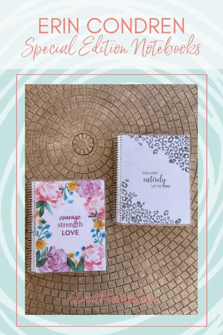 photo of 2 Erin Condren coiled notebooks with pretty covers.