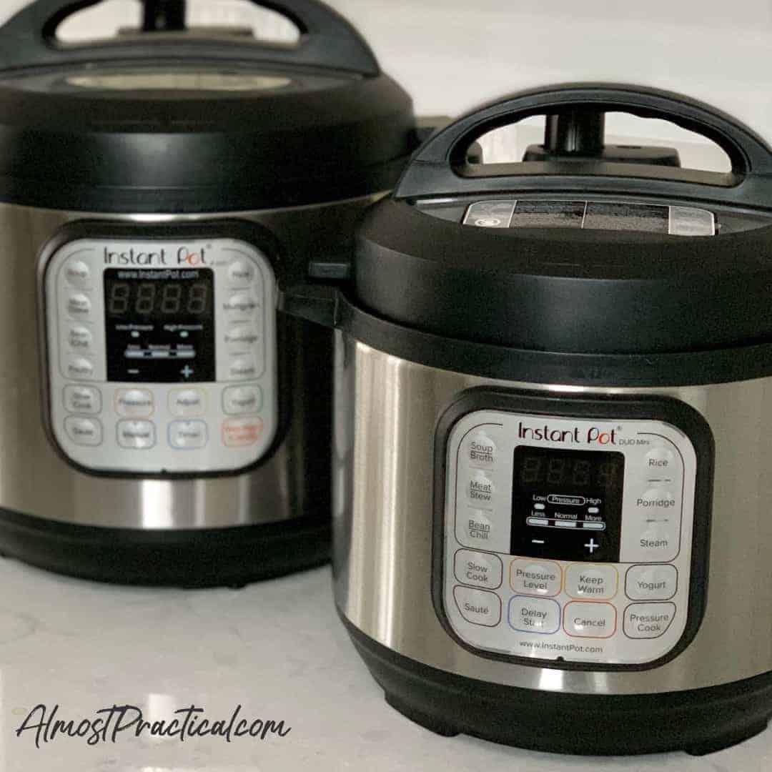 3 quart or 6 quart Instant Pot
