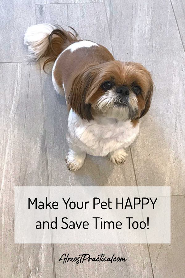 Every pet owner knows that taking care of your dog, cat, or other four legged friend can take up lots of time. Luckily there is a service that can help you with that. #pets #petlovers #dogs #cats