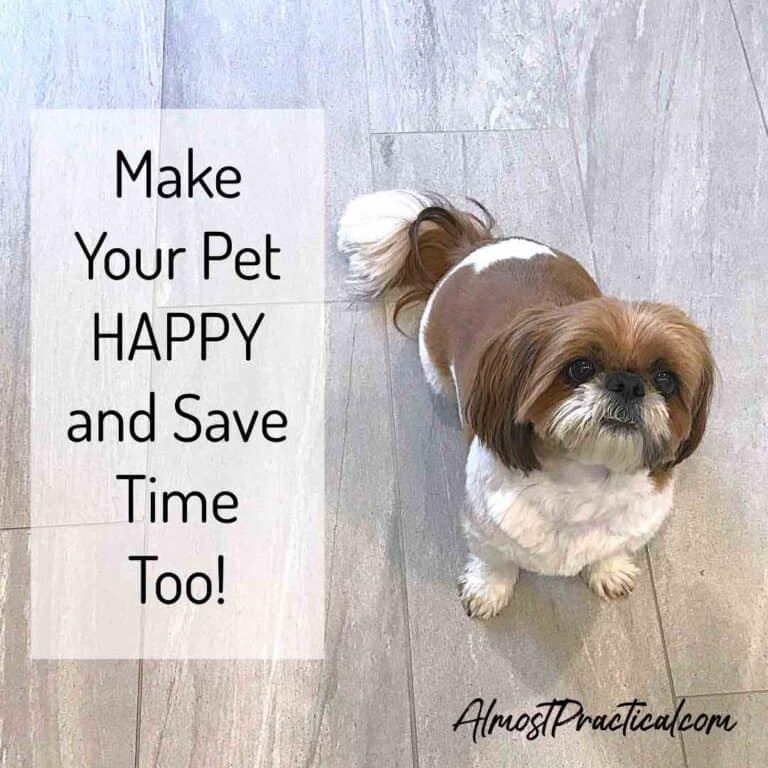 Chewy.com – Make Your Pet Happy and Save Time Too