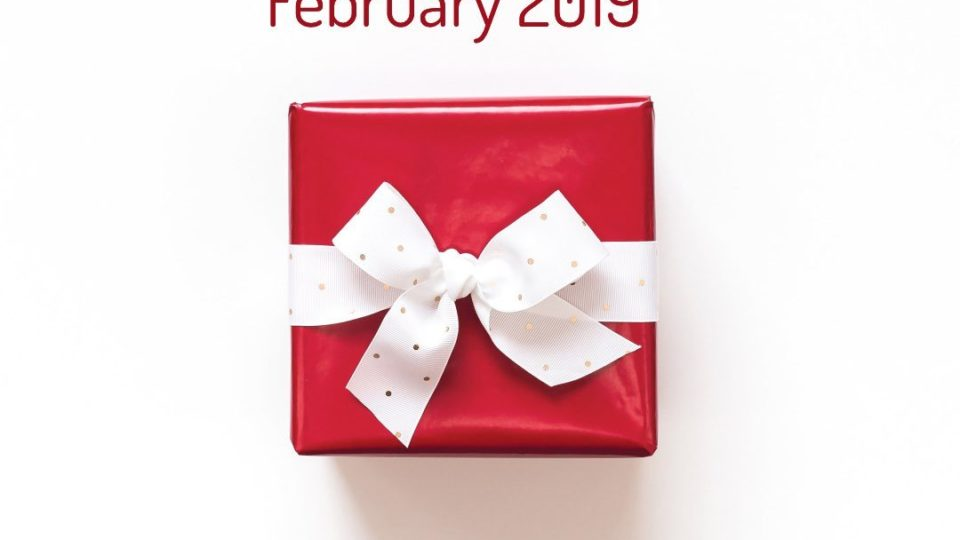 Cricut Mystery Box - February 2019 - small square red gift, white bow