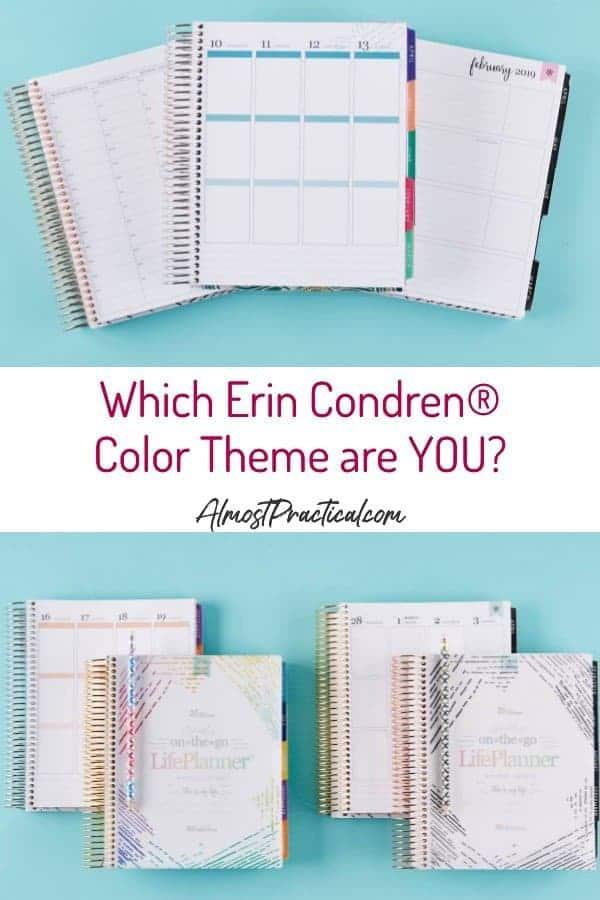 Erin Condren color themes