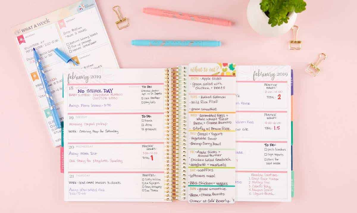 erin condren colorful theme