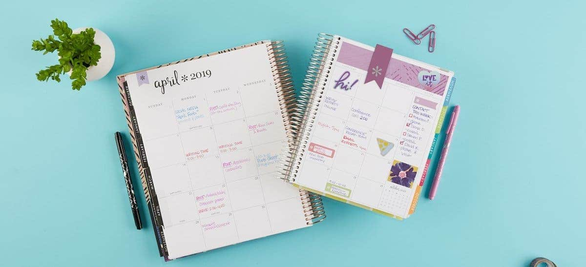 Erin Condren Deluxe Monthly Planner Color Themes